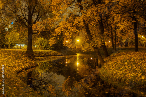 Foto op Aluminium Herfst River in the city park illuminated by street lamps