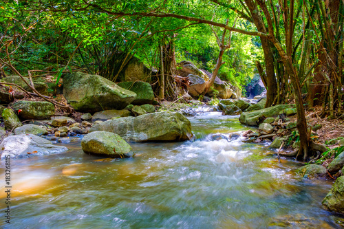 Water fall scenery wildlife at Nam Tok Kao Jones, Suan Phueng, Ratchaburi, Thailand © Tony