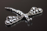 dragonfly brooch with white clarity stones on black background - 183282918
