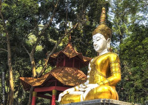 Foto op Aluminium Boeddha Buddha statue Wat Doi Suthep Chiang Mai Thailand