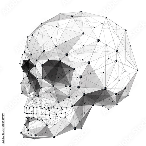 Vector Isolated Human Skull Low Poly From Metall Wireframe And Points Polygonal 3D White Dead