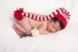Quadro image of a newborn brazilian baby curled sleeping in a blanket