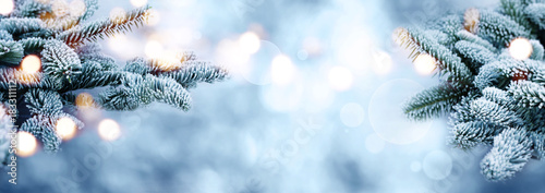 Leinwanddruck Bild Rime covered fir branches with bokeh in winter