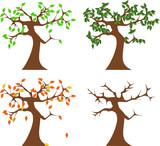 Baum im Wandel der Jahreszeiten