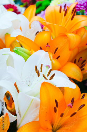 Bouquet of lily flowers Poster