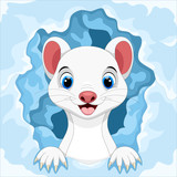 Cute white Least Weasel out of the snow hole