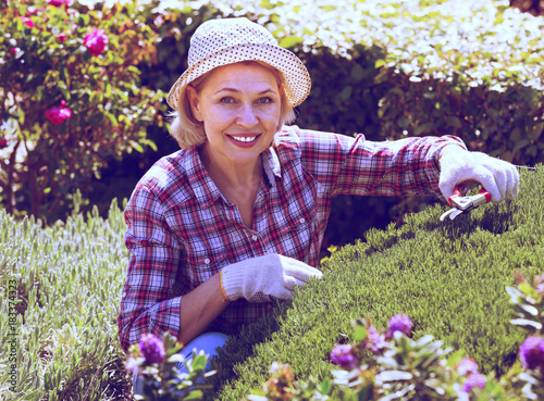 Senior woman working in the garden. Poster