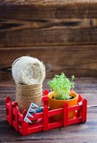 Peat pots, rough thread, rake and green sprouts in red box. Landing of seedling - 183385154