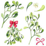 Set of Watercolor Christmas Mistletoe and Bows - 183392387