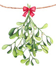 Watercolor Bouquet with Mistletoe and Bow. Christmas Illustration - 183392502