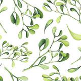 Seamless Pattern of Watercolor Light Green Mistletoe - 183392545