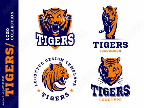 Tygrysy - logo, ikona, ilustracja kolekcji na białym tle