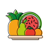 plate with fruits  vector illustration