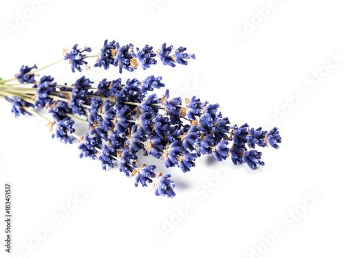 Papiers peints Lavande Lavender flowers bunch