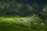 Le village de Batad et ses rizières, Philippines. - 183481590