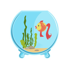 Round glass aquarium with golden fish. Different green algae and little stones on sand. Aquatic concept. Isolated flat vector icon for card or flyer