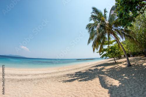 Poster Tropical strand einsamer weißer Strand auf Nosy Komba /Madagaskar