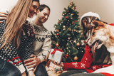 happy family in stylish sweaters and cute dog having fun at christmas tree with lights. atmospheric emotional moments. merry christmas and happy new year concept. space for text - 183504712