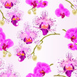 Seamless texture  Orchids purple and purple white Phalaenopsis stems with flowers and  buds closeup  vintage  vector editable illustration hand draw