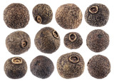 Allspice isolated on white background closeup. Black pepper collection - 183521950