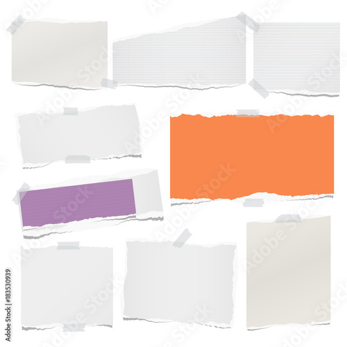 Ripped lined and blank note, notebook paper sheets for text or message stuck with sticky tape on white background