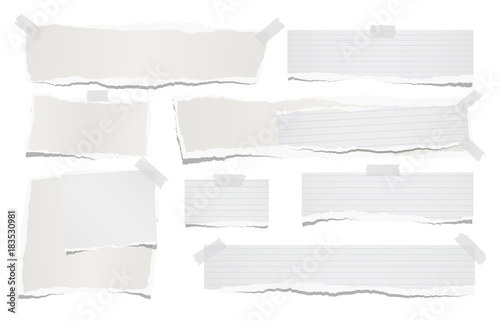 Ripped lined and blank note, notebook paper strips for text or message stuck with sticky tape on white background
