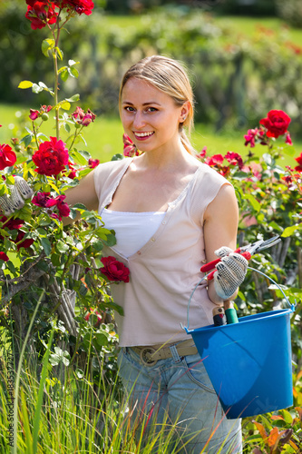 smiling young female working with bush roses with horticultural tools in garden