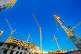 Large construction cranes. High and heavy construction machinery. - 183542799
