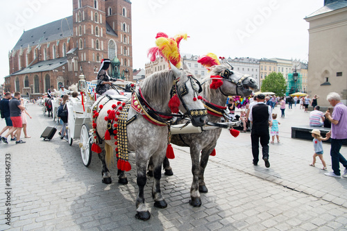 Sticker Horse carriage in main square of old town krakow, poland