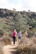 Quadro Young women hiking