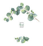 Watercolor vector wreath with green eucalyptus leaves and branches. - 183572900