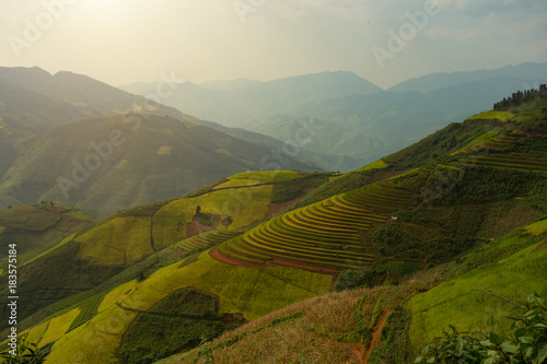 In de dag Rijstvelden Vietnam Mu Cang Chai Bai Rice terrace curved landscape on the mountain