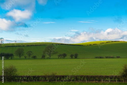 Fotobehang Lente Green field and blue sky