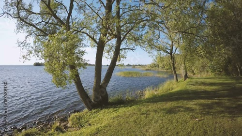 Calm and beautiful nature scene with bicycle parked by a lake in Sweden. Peaceful and idyllic summer landscape.