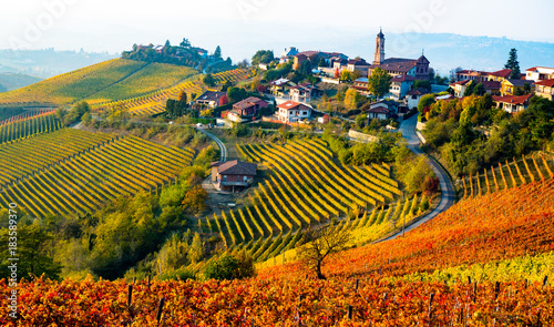 Foto op Canvas Wijngaard Italy village in autumn