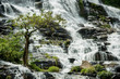 Waterfall in Doi Inthanon National Park - 183595979
