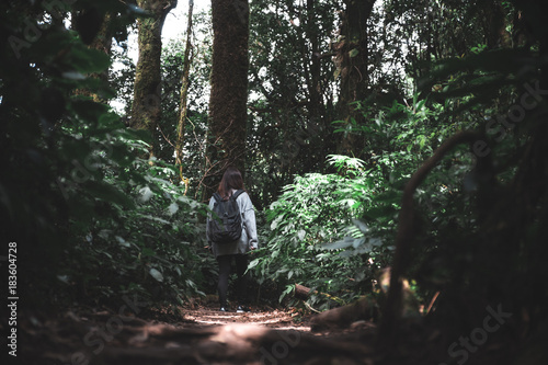 An Asian woman tourist walking and trekking in tropical forest
