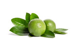 two green limes with leaves isolated on white background - 183610174