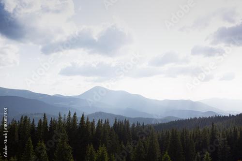 Staande foto Wit mountain landscape in the Carpathians, Ukraine