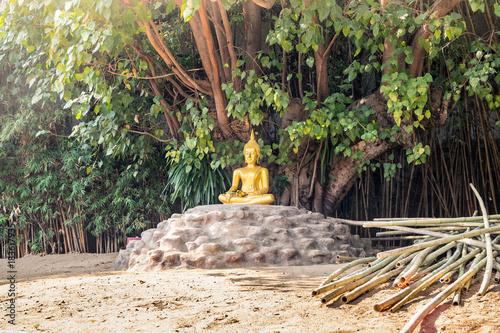 Foto op Aluminium Boeddha buddha insight under the tree. thailand