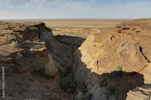 Fotobehang Grijze traf. View Mingbulak depression on the territory of Kyzylkum desert.Uzbekistan.