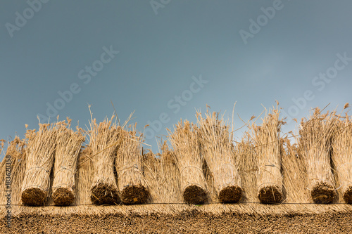 Thatched Roof with Straw