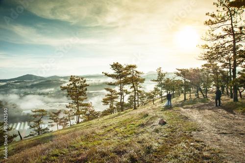 Fotobehang Lente Da Phu pine hill at the morning