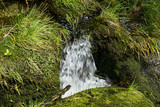 Small waterfall between stones with moss in the forest - 183638778