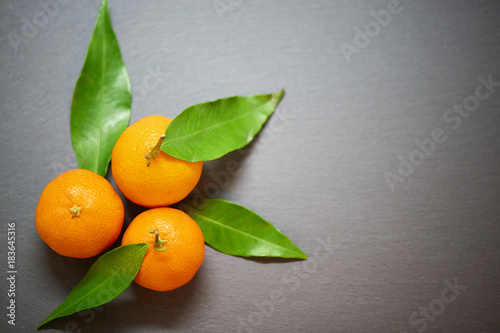 Tangerines with leaves on the slate background, top view