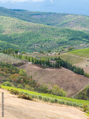 Plexiglas Toscane Tuscan landscape in Italy