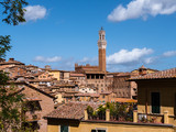 View on the city of Siena - 183647110