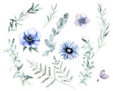 Watercolor floral set. Hand drawn isolated illustration. Botanical art background - 183659549