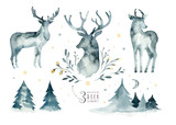 Watercolor closeup portrait of blue deer. Isolated on white background. Hand drawn christmas indigo illustration. Greeting card animal winter design decoration - 183672936
