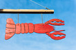 Closeup of red lobster sign for restaurant hanging outside isolated against blue sky